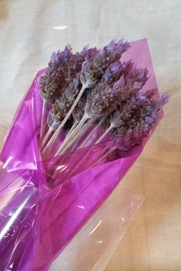Ruth lavender
