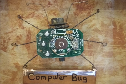 'Computer bug' by Sue Dilley